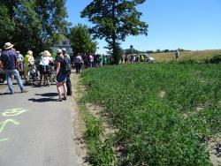 2018-07-01-Sternlauf-Maria-Lindenhof-jotw-DSC01461